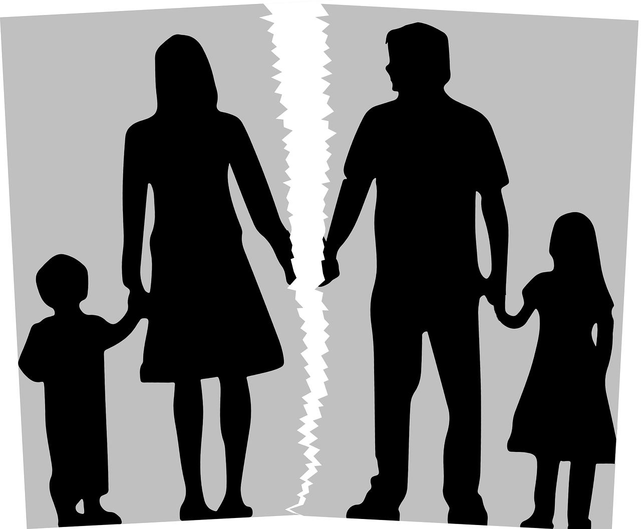 Delt forældremyndighed
