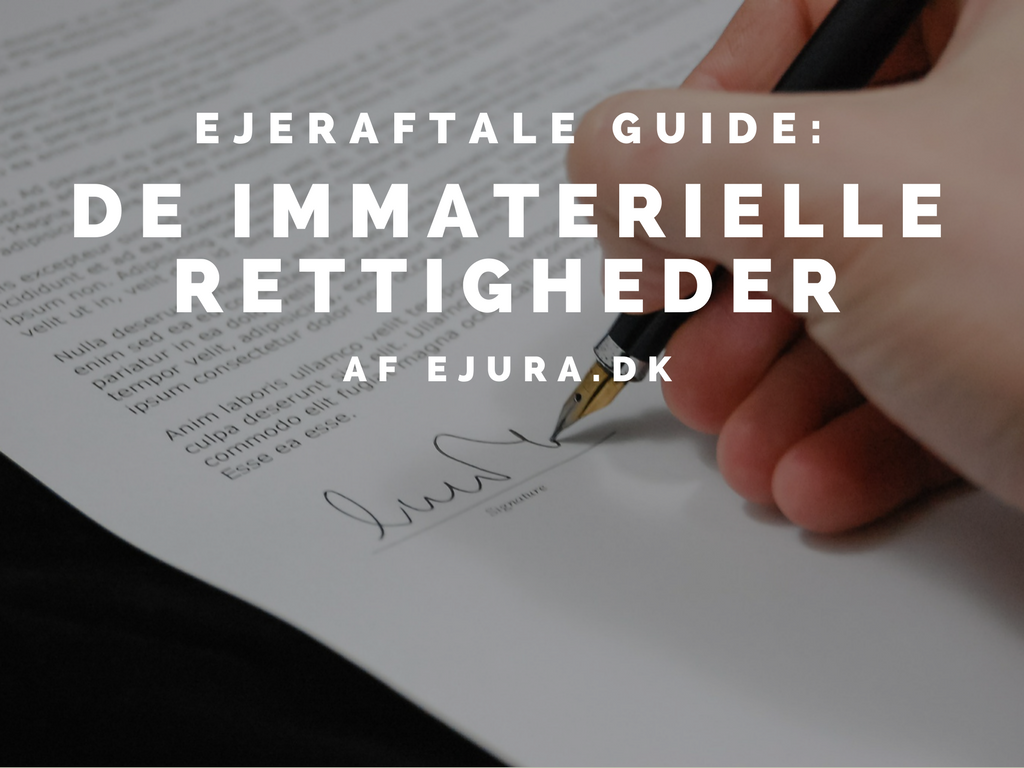 Ejeraftale dokument guide om immaterielle rettigheder