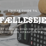 Fælleseje guide eJura