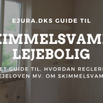 Skimmelsvamp i lejebolig ejura.dk